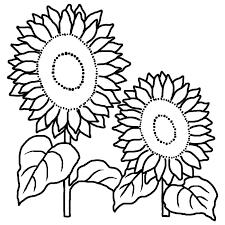ヒマワリ2向日葵白黒夏の花無料イラスト素材