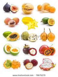tropical fruit names. Fine Fruit Inside Tropical Fruit Names A