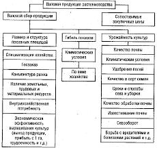 Реферат Анализ производства продукции растениеводства в КСУП  Структурно логическая модель факторной системы объема производства продукции растениеводства