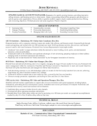 Resume Template Online Resumes Portfolio Functional With Free