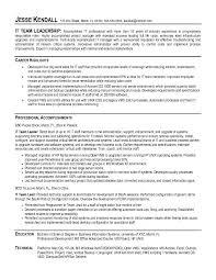 Resume Of Team Leader It Team Lead Resume Sample Rome Fontanacountryinn Com