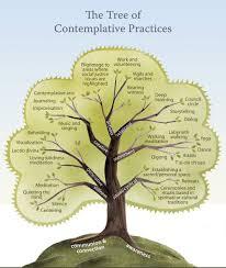 learn meditation scott k smith contemplative practice in meditation