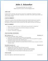 Sample Professional Resume Format Resume Example