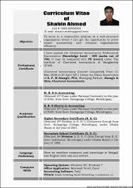 Best Resume Format For Experienced Professionals Lcysne Com