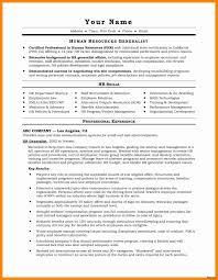 Resume Profile Summary Inspirational Summary A Resume Luxury Resume