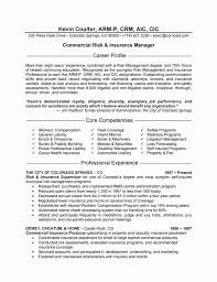 Independent Insurance Agent Resume Sample | Resume Samples Across within  Insurance Agent Resume Examples