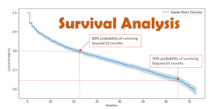 Survival Analysis Intuition Implementation In Python