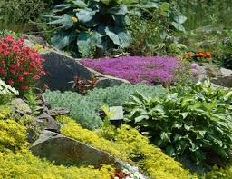 garden ground cover. How To Build Great Rock Gardens For Small Spaces Garden Ground Cover O
