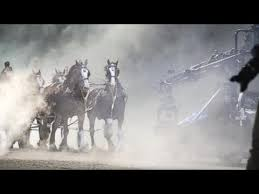 iconic clydesdale budweiser mercial