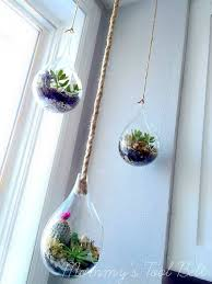 diy hanging globe and geo terrariums