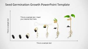 Powerpoint Timeline In Cartesian Axis With Seed Germination
