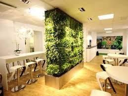 decoration furniture living room. Full Size Of Furniture:impressive Design Ideas Living Room Plants Exquisite Decoration Best 25 On Furniture