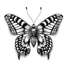 Fototapeta Tetovací Umění Motýl Pro Design A Dekoraci Realistický Motýl