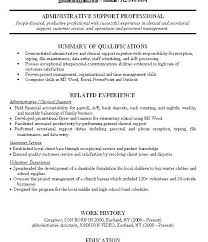 Summary Examples For Resume Gorgeous Skills And Experience Examples On Resume Resume Summary Examples For