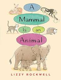 A Mammal Is An Animal Ebook Lizzy Rockwell Amazon In