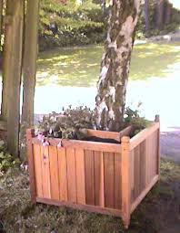 estate tree planter by the walk side for larger image