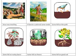 the parable of sower. Wonderful Parable The Parable Of The Sower Cartoon To Parable Of Sower
