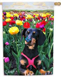 springtime dachshund flag 18 30