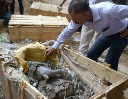 ரன்வீர் ஷாவின் பண்ணைவீட்டில் இருந்து 80 சிலைகள் பறிமுதல்