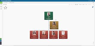 Organizational Chart Maker Orgplus Realtime Professional
