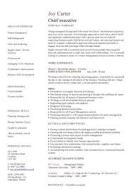 Examples of a Skills Based CV happytom co