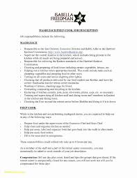 Child Acting Resume The Acting Resume Format Can Be In Simple Order