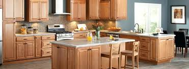 Small Picture The Home Depot Kitchen Cabinets colorviewfinderco