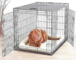 outdoor dog crate dog crate chain link dog kennel outdoor pet big dog cage extra large