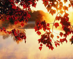 Nice Autumn Wallpaper Desktop Hd ...