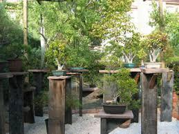 bonsai gardens. .: the bonsai garden 2004, devoted to art and gardening - forum, rss, gallery :. gardens