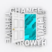 Business Process Reengineering Strategy Organization System