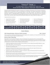 Free Executive Digital Marketing Manager Resume Template Resumenow