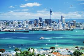 new to auckland wdhb