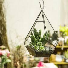Image is loading Modern-Artistic-Hanging-Air-Plant-Teardrop-Diamond-Glass-