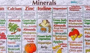 Vitamins And Minerals Sources And Functions Chart Vitamins And Minerals Sources Functions Colorful Chart