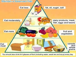 Balanced Diet Chart Balanced Diet Chart 10 638 X 479 Making The Web Com