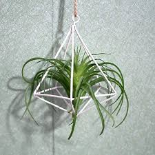 geometric plant holder metal plant holder geometric air plants rack hanging freestanding wall hanging rustic iron