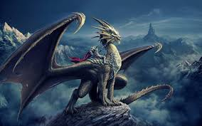 3d dragon knight fantasy wallpapers wallpapers