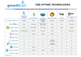 Cbd Bioavailability What Is Cbd Bioavailability And Why