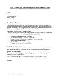 Fresh Employment Separation Certificate Form Employee Letter Format