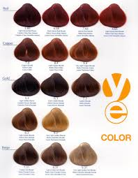 Hair Dye Colors Chart Ash Hair Color Chart Jasonkellyphoto Co