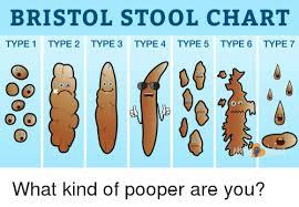 Bristol Stool Chart Type 1 Type 2 Type 3 Type 4type 5 Type 6
