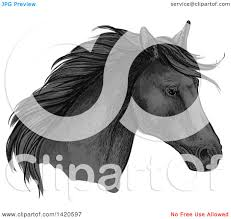 horse head clip art color.  Color Clipart Of A Sketched And Color Filled Black Horse Head  Royalty Free  Vector Illustration By Tradition SM Throughout Clip Art C