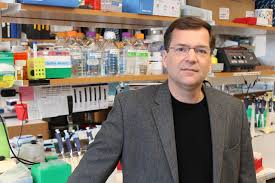 umass researchers off switch for gene editing news umass researchers off switch for gene editing news com worcester ma