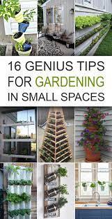 diytotry small space gardening urban