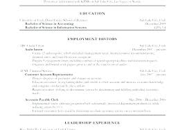 Internal Resume Template Amazing Internal Auditor Resume Sample In Word 48 Administrativelawjudge