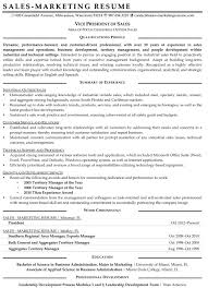 Resume Samples For Sales And Marketing Jobs Vice President Of S