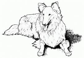 Small Picture Coloring Pages Realistic Coloring Pages Dogs Gekimoe Realistic