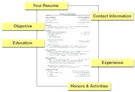 Examples Of A Basic Resume Sarahepps Com