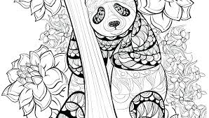 Panda Coloring Page Panda Coloring Page Red Panda Coloring Pages